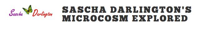 Sascha Darlington's Microcosm Explored
